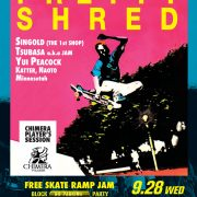 pretty-shred-16.09.28-v1[OL]