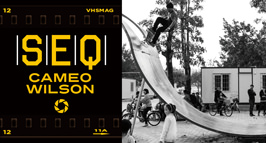 [SEQ] CAMEO WILSON - FAKIE BIG SPIN TO BLUNT 180 OUT